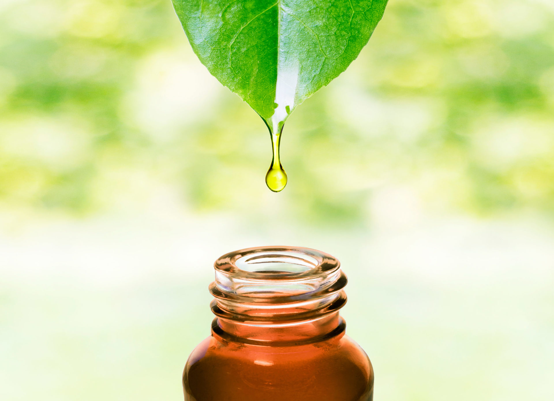 essential oil with leaf
