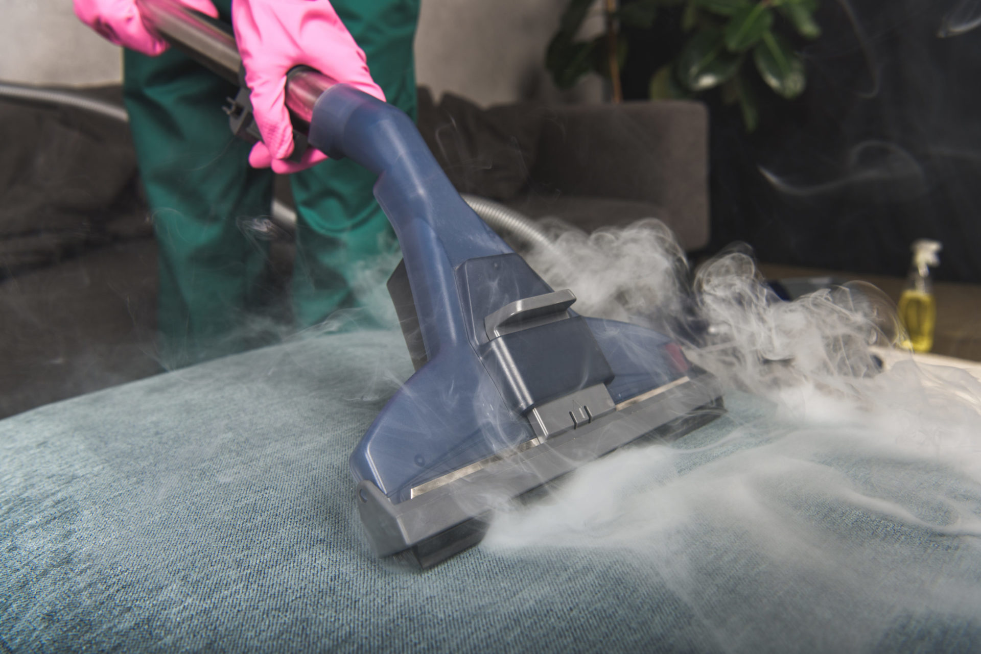 steam cleaning for bed bugs