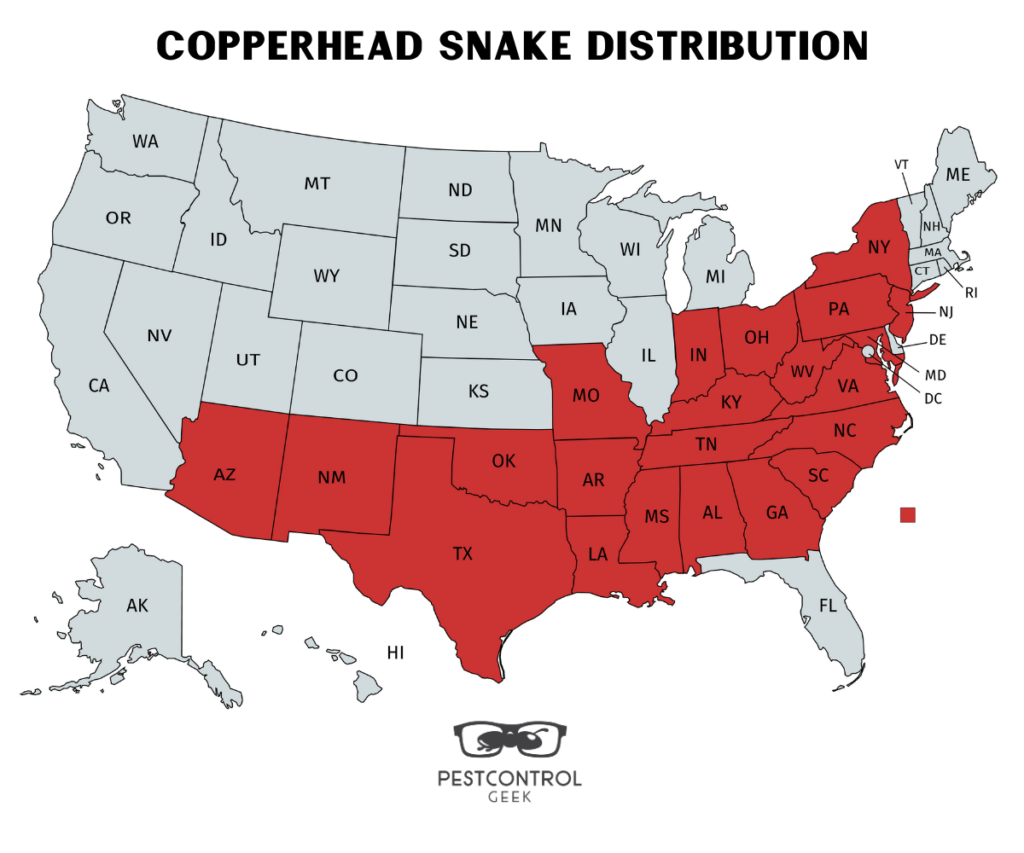 Copperhead Snake Distribution
